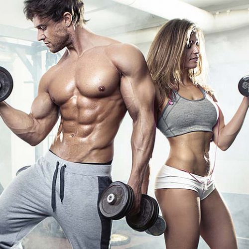 highest quality steroids for sale Hilma Biocare