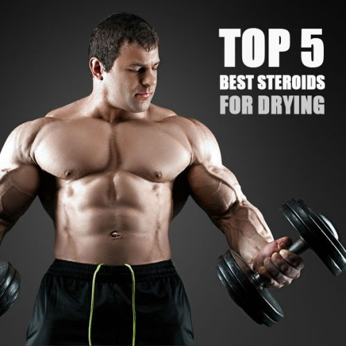 Top 5 Best Steroids for Drying hilma biocare farmaboom