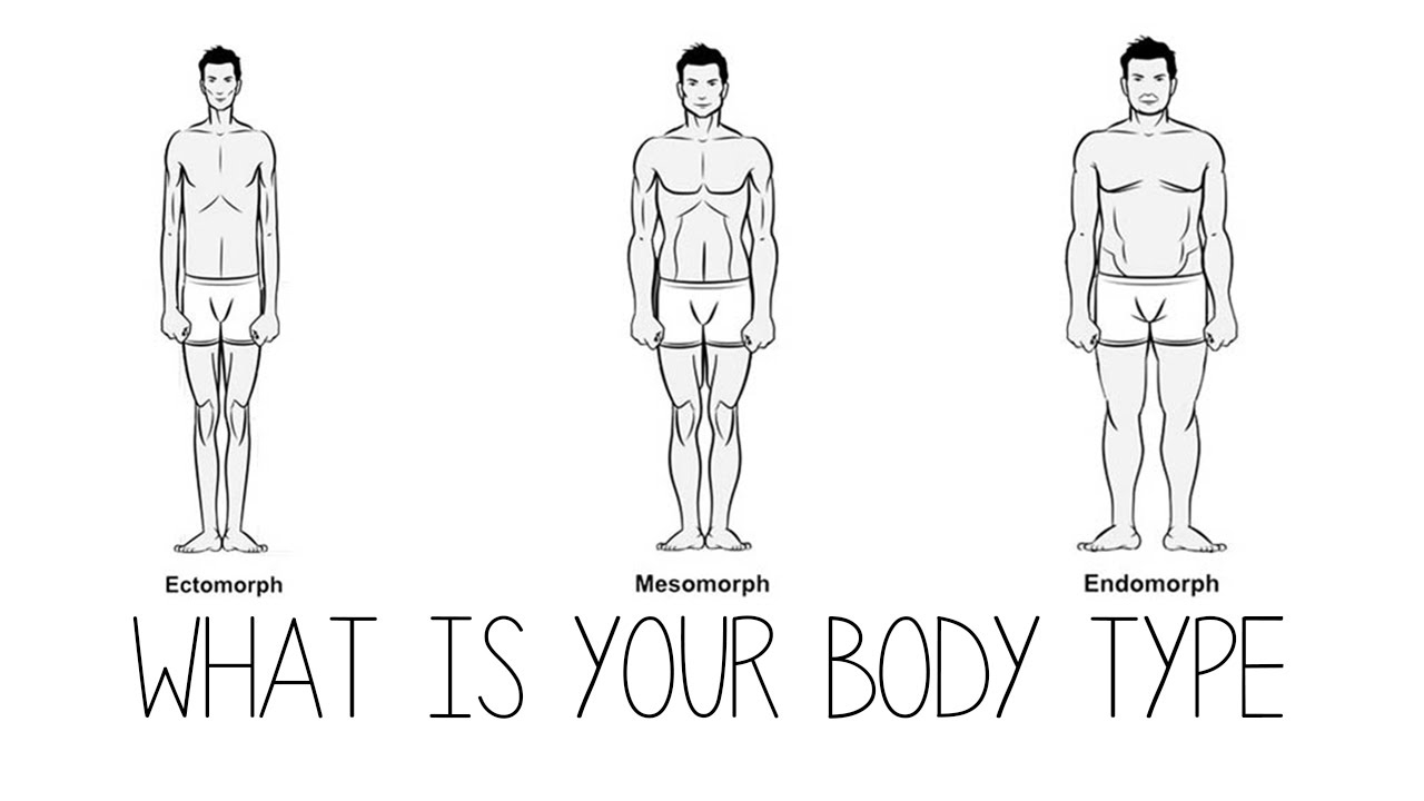 What is your body type: ectomorph, mesomorph, endomorph