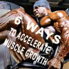 How to accelerate leg muscle growth - 6 rules_farmaboom